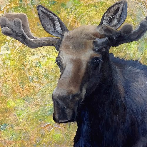 mr moose by sharon brening