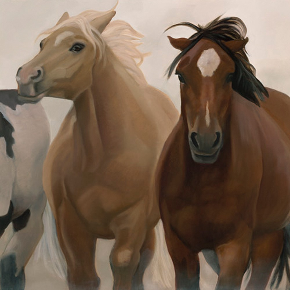wild and free horses by sharon brening